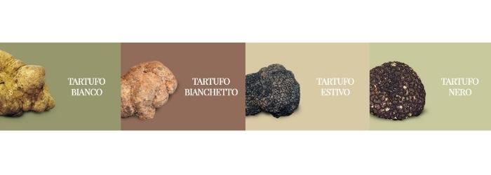 tipologie-tartufo